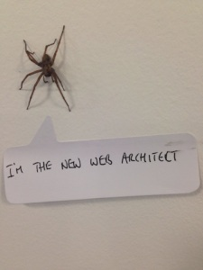 web_architect